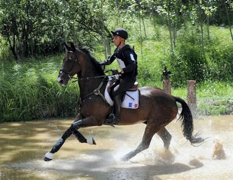 Les entraîneurs de l'équipe de France d'équitation aux Jeux olympiques