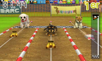 Course nintendogs