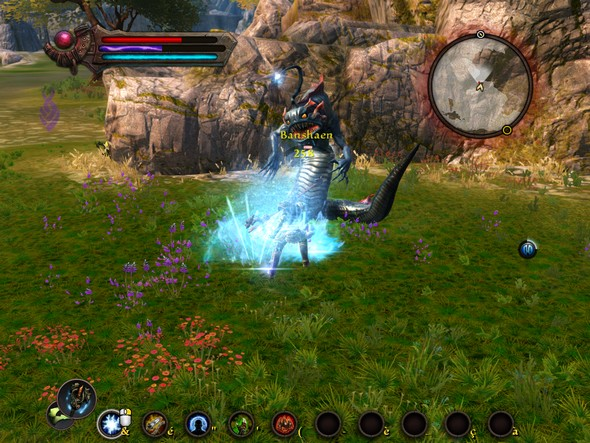 Combat Reckoning : Les royaumes d'Amalur