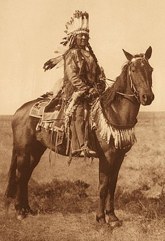 Les prémices du rapport des Indiens avec les chevaux