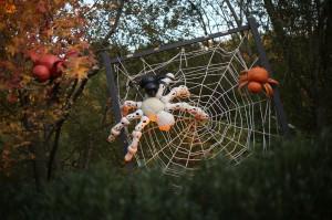 Sculpture sur citrouilles de Halloween : araignée