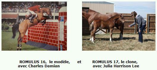 Romulus 16 a été cloné