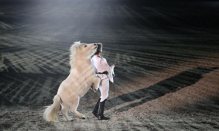 Poney au rythme de la musique à la Nuit du Cheval