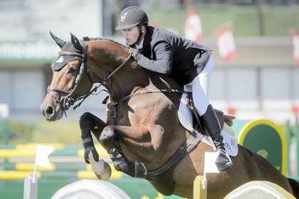 Powerplay, le nouveau cheval d'Eric Lamaze