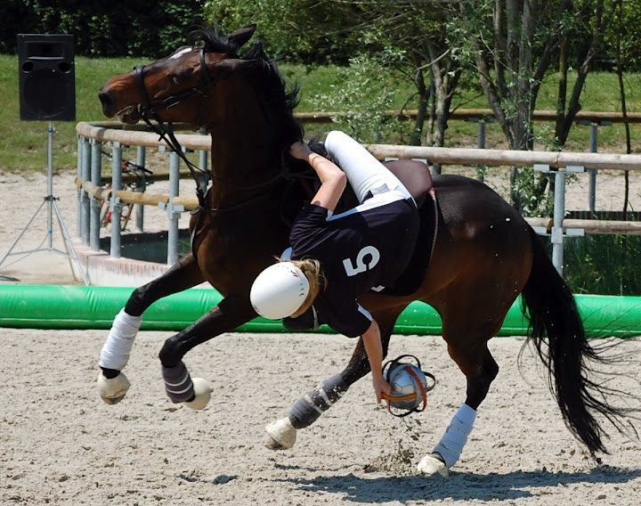 ramassage pendant un match de horse-ball