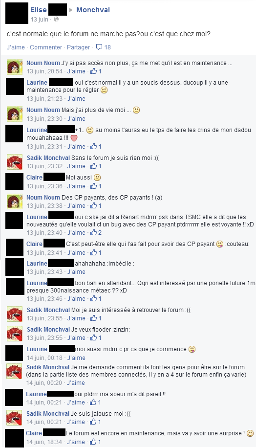 Flood sur Facebook