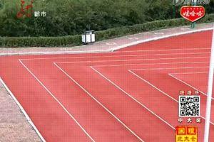 Sélection été sportif 2014 athlétisme