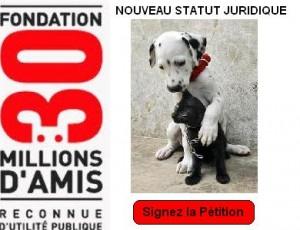 Statut juridique animaux : du bien meuble à l'être doué de sensibilité