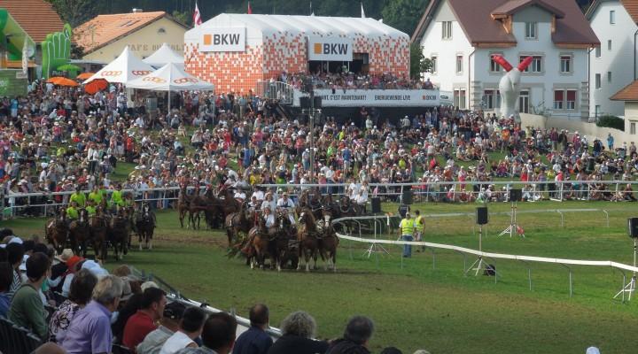 Le Marché-Concours de Saignelégier: une tradition helvétique de plus d'un siècle !