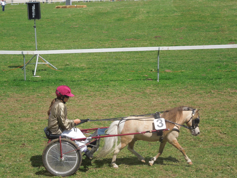 un enfant et son poney de course au March-Concours de Saignelégier