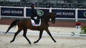 Résultats des Jeux Equestres Mondiaux 2014 dressage para équestre