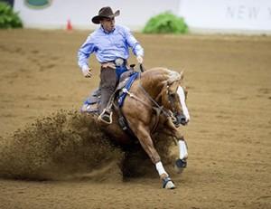 Résultats des Jeux Equestres Mondiaux 2014 reining