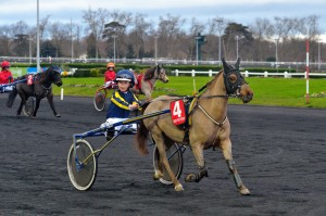 SuperDimanche à l'hippodrome initiation trot