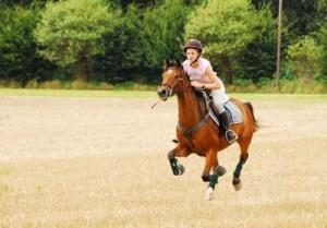 Balade à cheval 2