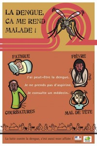 Dengue prévention
