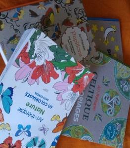 Les fameux carnets de coloriage antistress.