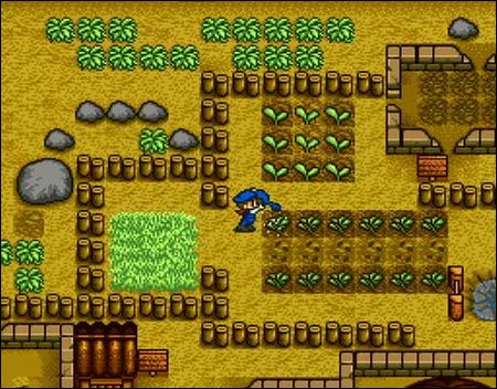 Le tout premier Harvest Moon