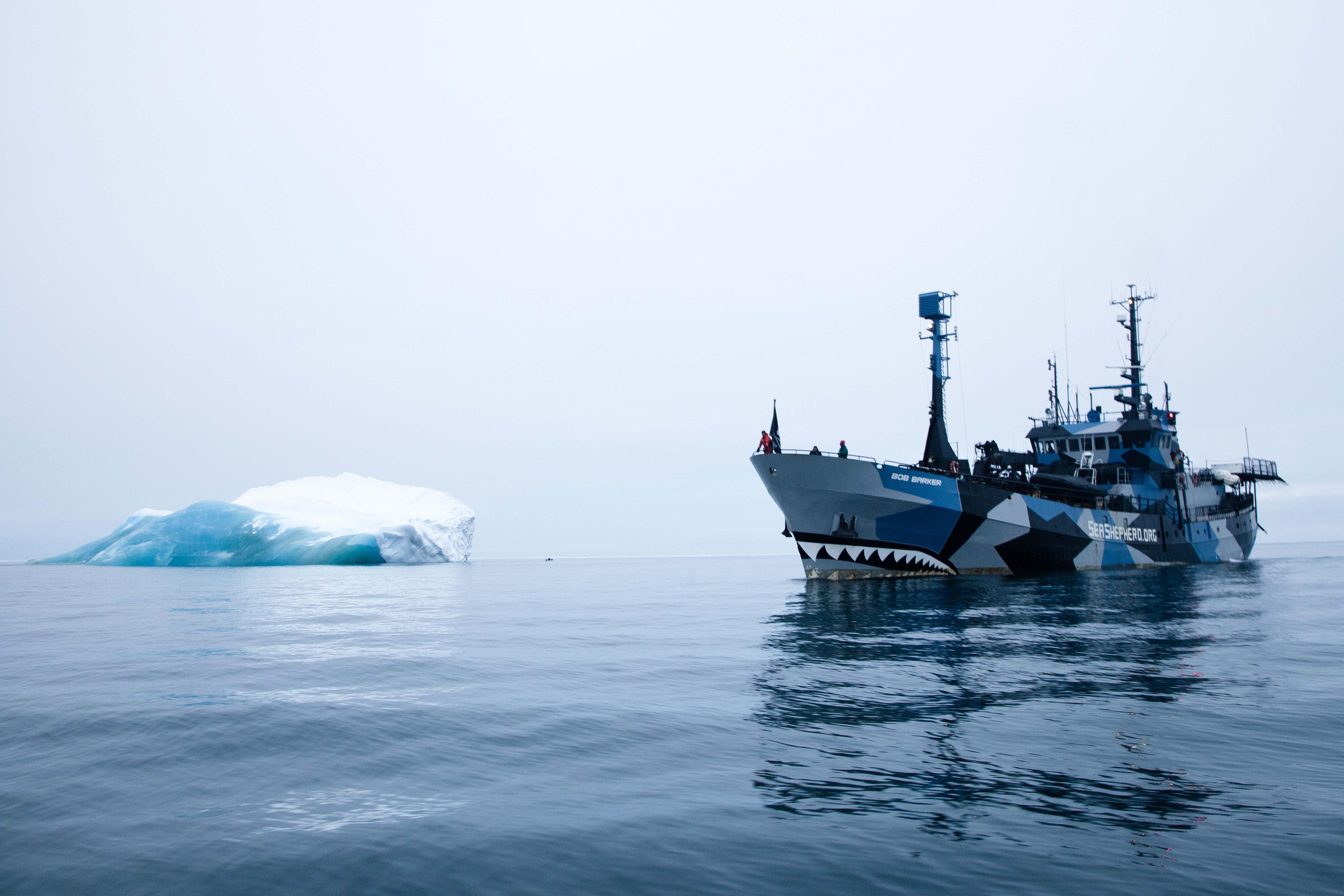 Sea Shepperd