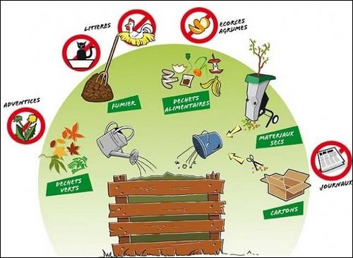 Le compost et sa composition