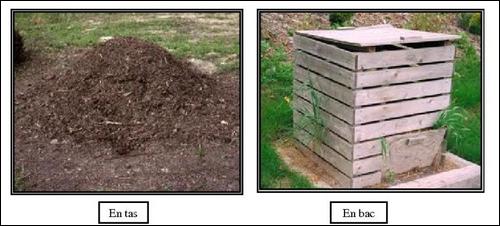 Les différents compost à mettre dans votre jardin