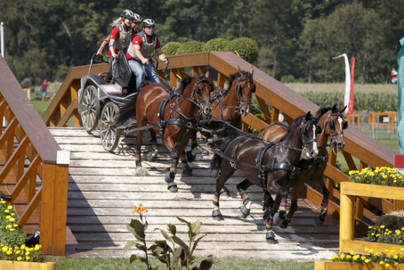 Championnats Europe équitation aachen 2015 attelage brauchle