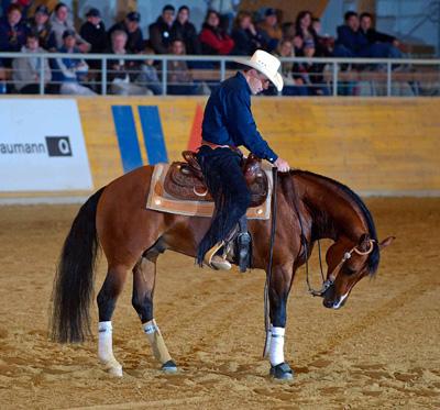 Discipline équitation western reining équipement