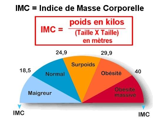 IMC bactéries et obésité