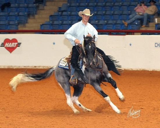 Reining discipline spin équitation