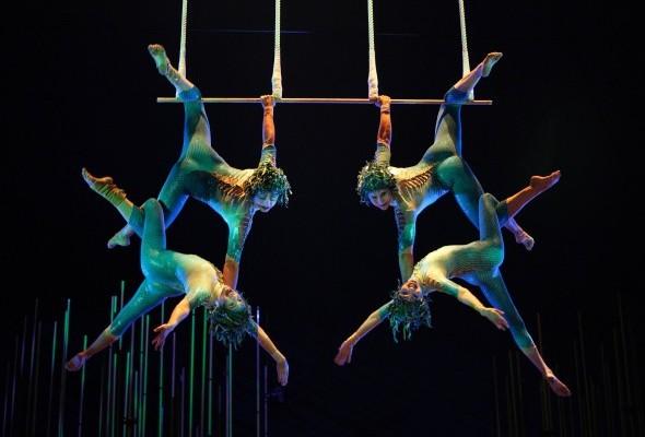 Zoom sur le Cirque du Soleil