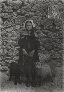 carte de 1906 d'une résidente de l'île d'Ouessant et deux agneaux - copie