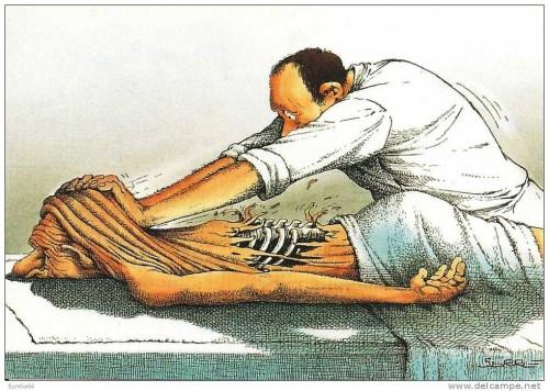 Le métier de kinésithérapeute