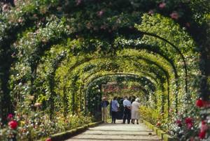 La roseraie du Val de Marne entrée