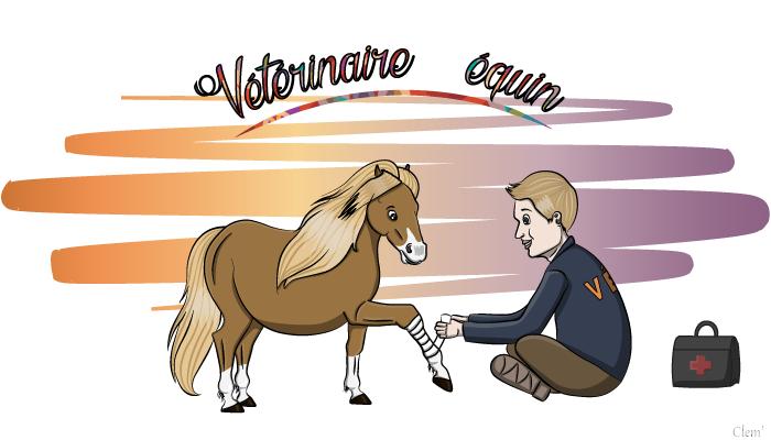 Les métiers du cheval : vétérinaire équin