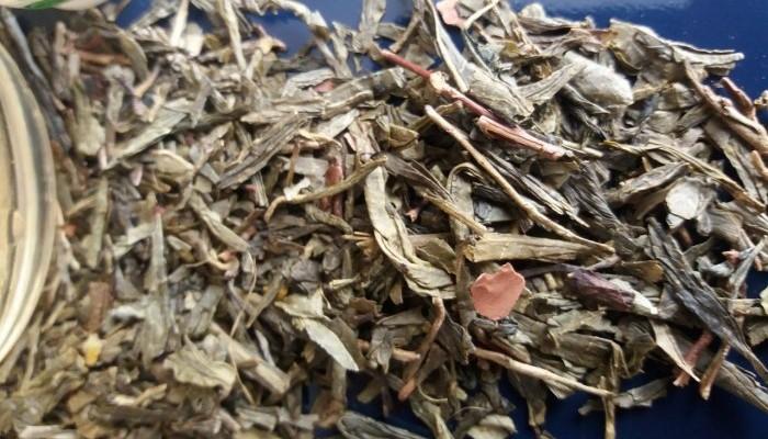 Le thé : le plaisir en quelques feuilles