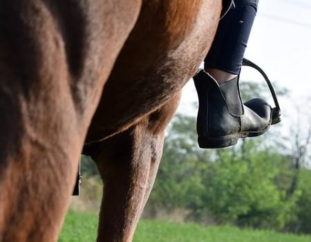 Quelles chaussures choisir pour monter à cheval ?