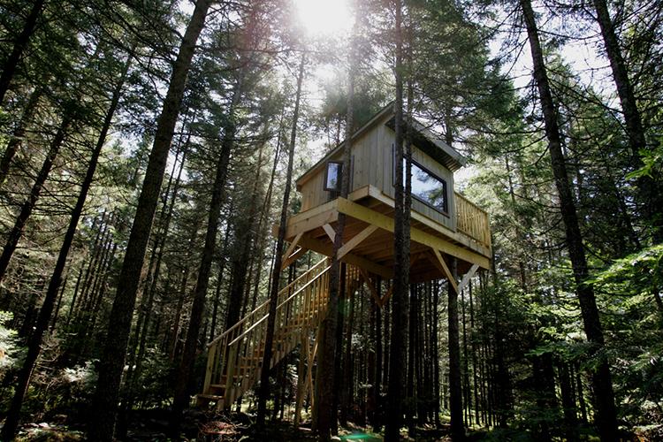 Kabania : des cabanes dans les arbres au Québec