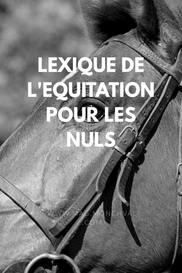Le lexique de l'équitation pour les nuls