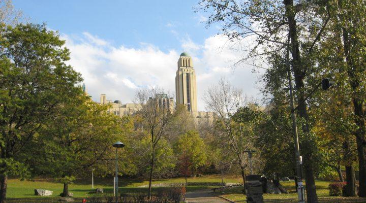 Des conseils pour les Français qui viennent étudier à Montréal