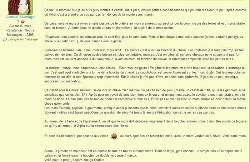 Témoignage de Cheval Sauvage