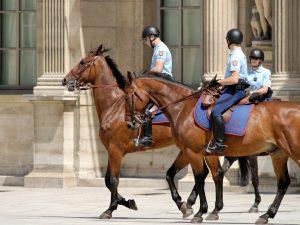 Chevaux et cavaliers de la garde républicaine