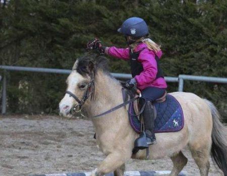 Le laser game à cheval