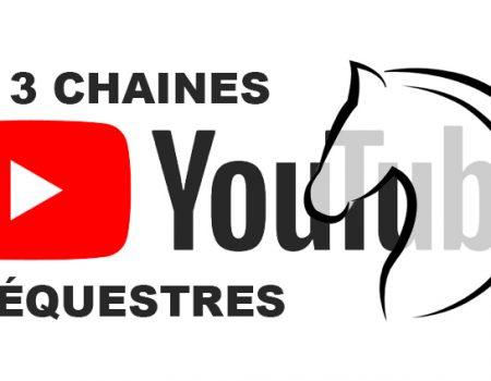 3 chaînes YouTube équestres francophones à suivre