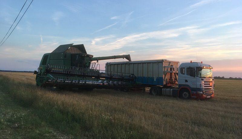 Les principales céréales cultivées en France