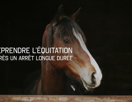 Reprendre l'équitation après un arrêt longue durée