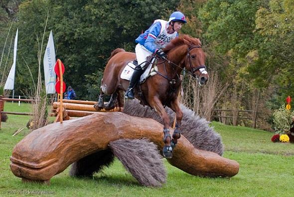 Les Jeux équestres mondiaux