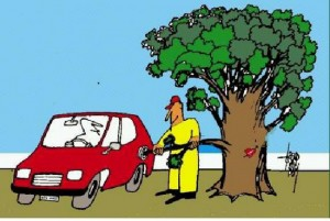 Carburants issus de la biomasse