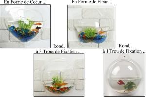 Minuscules bocaux à poisson
