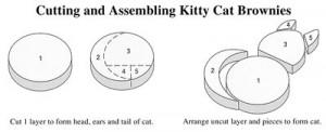 schéma chat