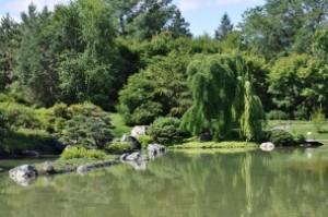 Sur cette photo se trouve un étang entouré d'arbres dans le Jardin botanique de Montréal, qui est le deuxième bon plan pour sortir à Montréal.