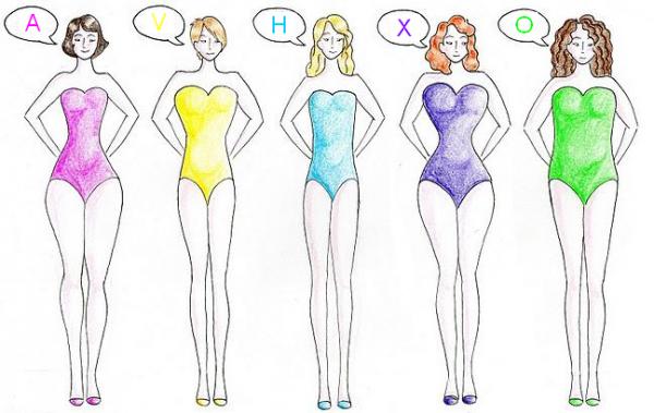 Schéma représentant les différentes mophologies